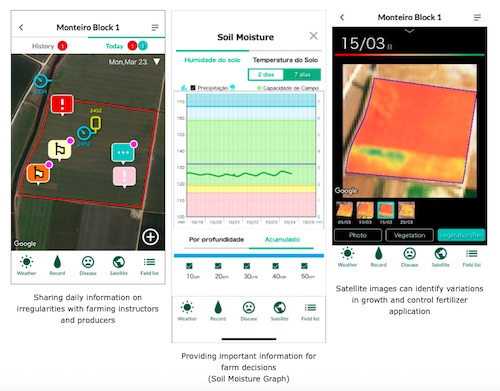 NEC and Kagome to Provide AI-enabled Services that Improve Tomato Yields