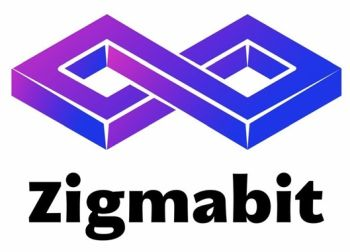 Low_Zigmabit201912121.jpg