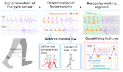 Fujitsu Develops Digitization Technology to Quantify Various Walking Characteristics Resulting from Diseases