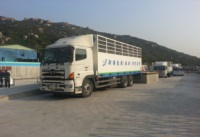 NewOcean Energy Officially Commences the Operation of Bottled LPG Distribution in Hong Kong